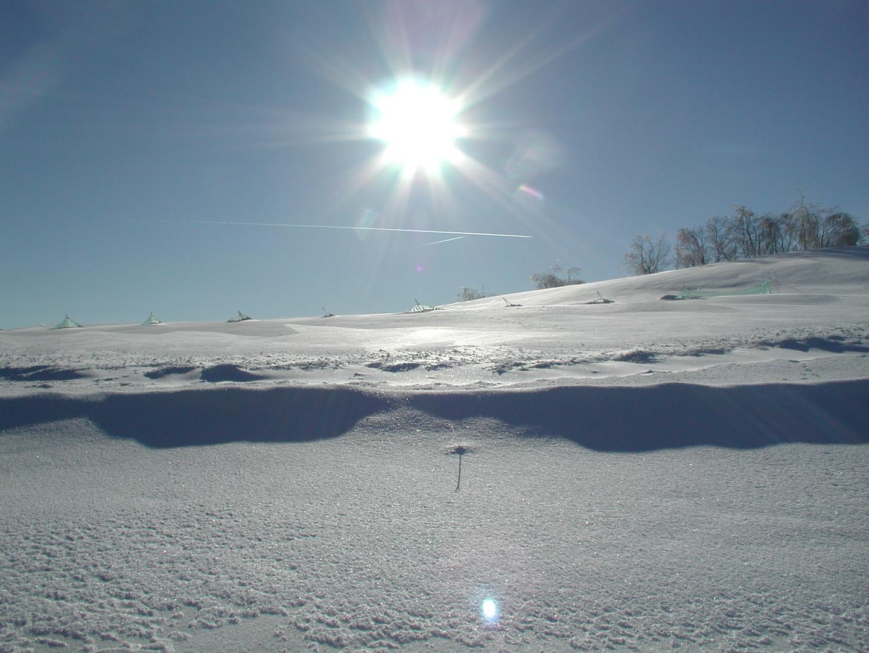Klirrende Kälte in der Mittagssonne