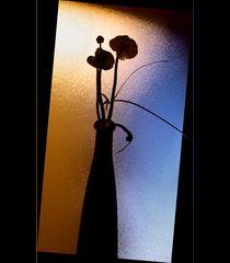 Klofenster mit Vase......