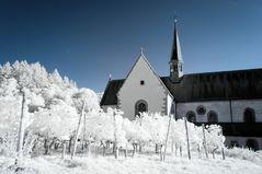 Kloster Bronnbach 5