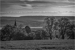 Kloster Donndorf N°51