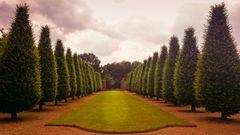 Kloster Garten