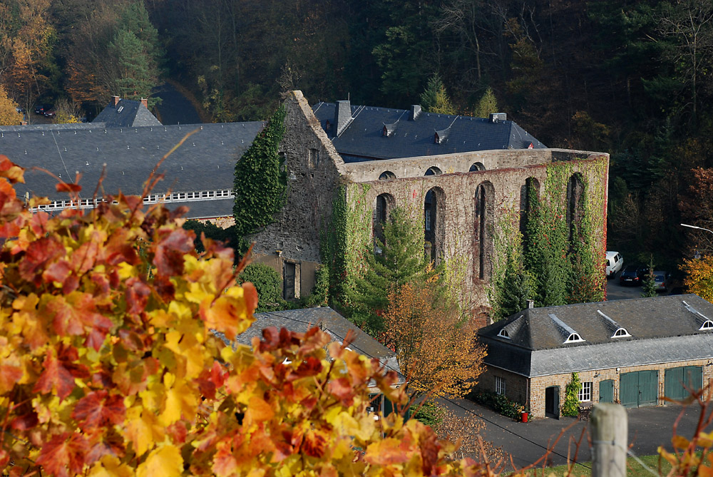 Kloster Marienthal