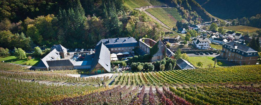 Kloster Marienthal Dernau