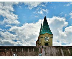 Kloster Niederaltaich in Sicht!