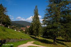 Klosterreichenbach Parkspaziergang