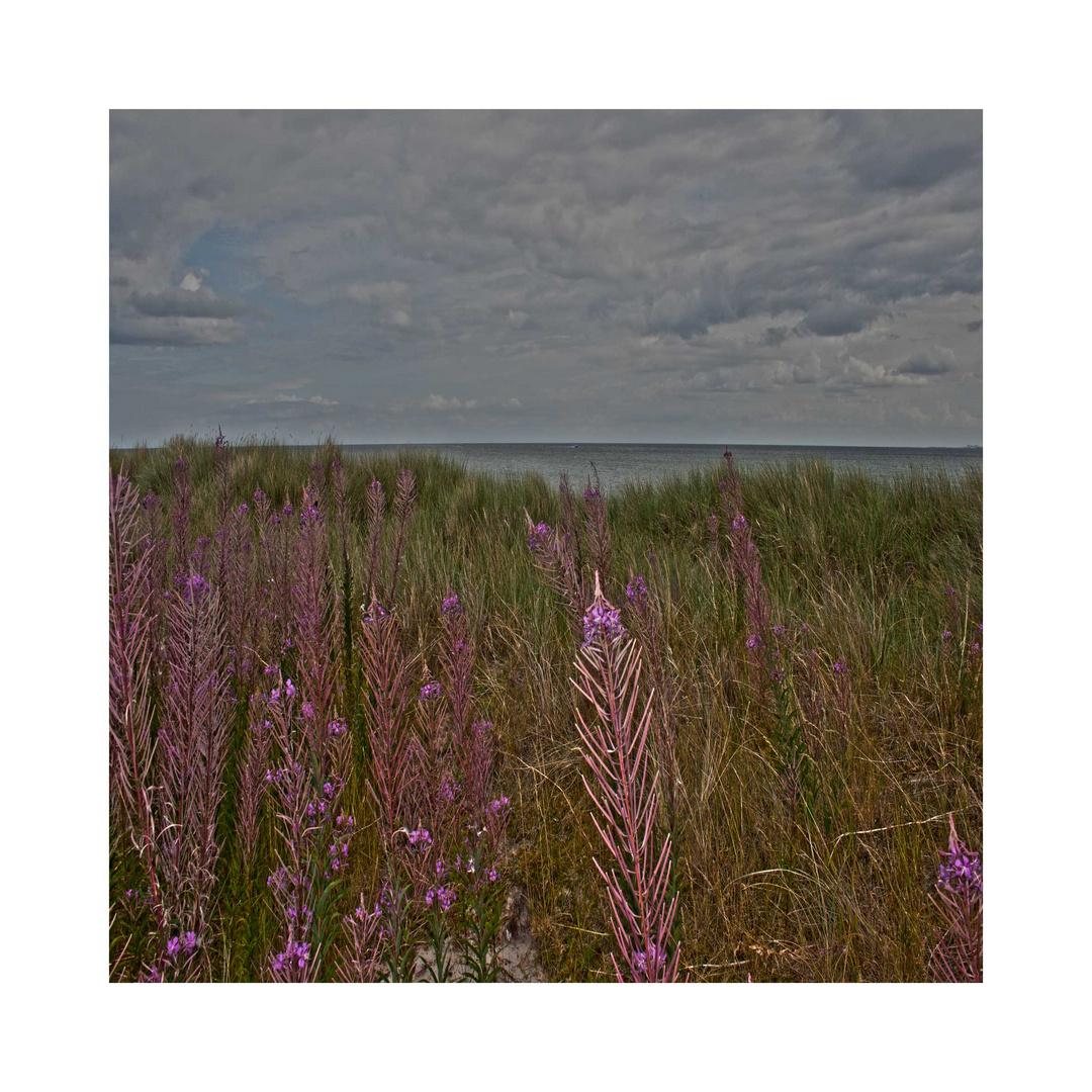Klosterseestrand an der Ostsee