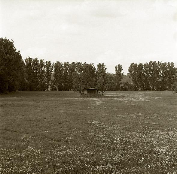 klosterwiese