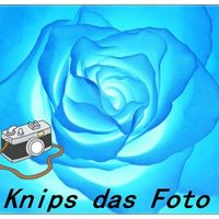 Knips das Foto