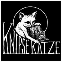 Knipse-Katze