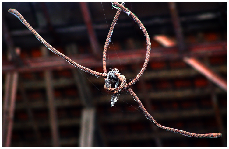 Knoten im Streiflicht