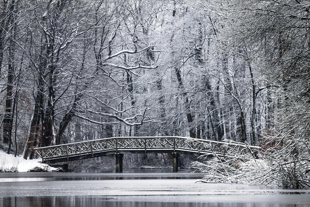Knüppelbrücke am Bagnosee ( Farbe)