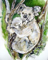 Koala und Baby