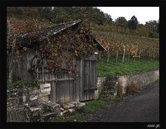 Kochertaler Weinkellerei Anno 1418
