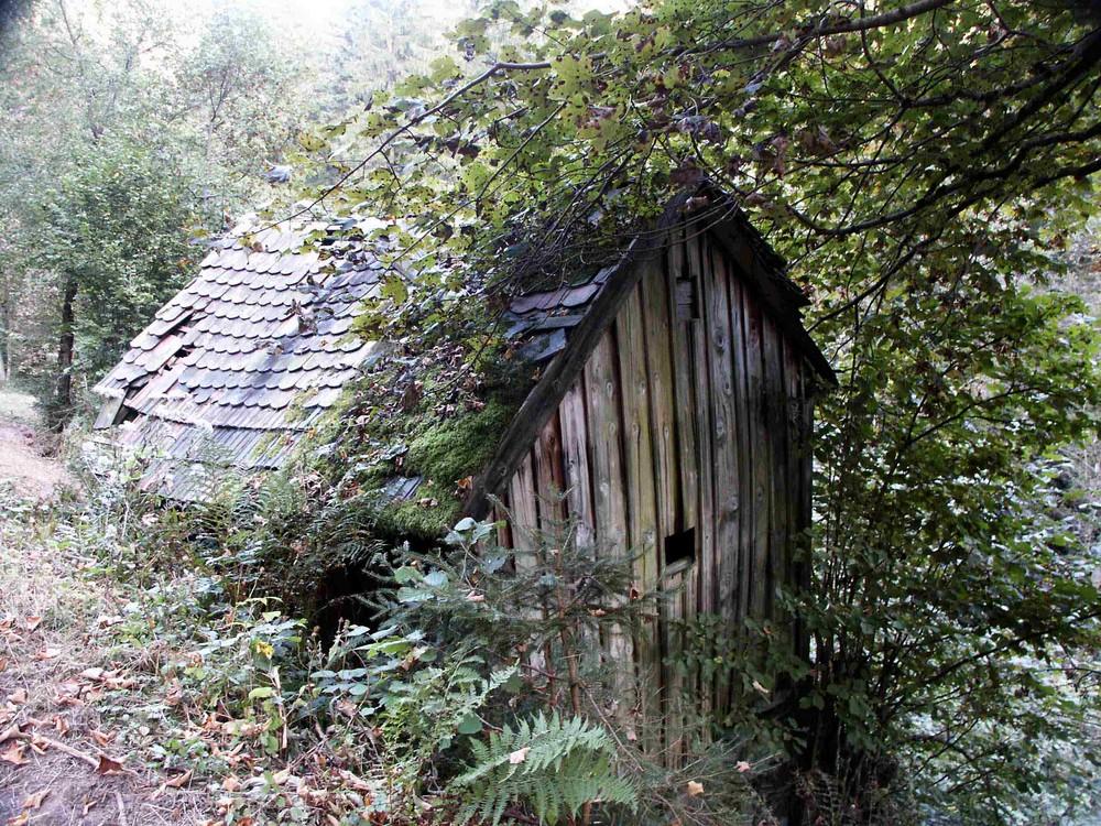 Köhlerhütte ...