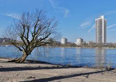 Köln - Blick über den Rhein