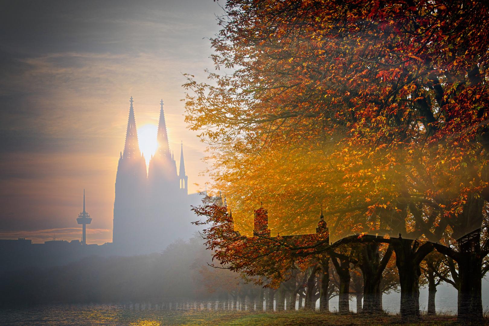 Koln Im Herbst Foto Bild Sunset Sonnenuntergang Herbst Bilder Auf Fotocommunity