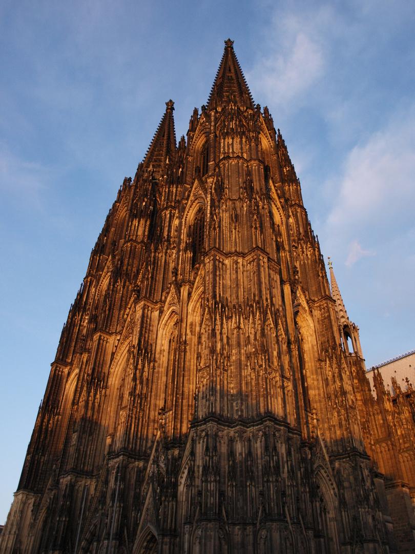 Kölner Dom in der Abendsonne
