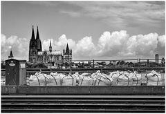 Kölner Variante