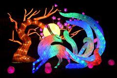 Kölner Zoo - China Light Festival 06