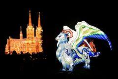 Kölner Zoo - China Light Festival 09