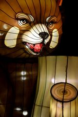 Kölner Zoo - China Light Festival 12