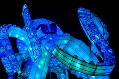 Kölner Zoo - China Light Festival 17
