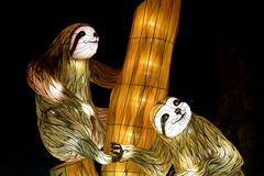 Kölner Zoo - China Light Festival 22