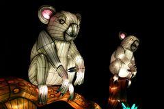 Kölner Zoo - China Light Festival 24