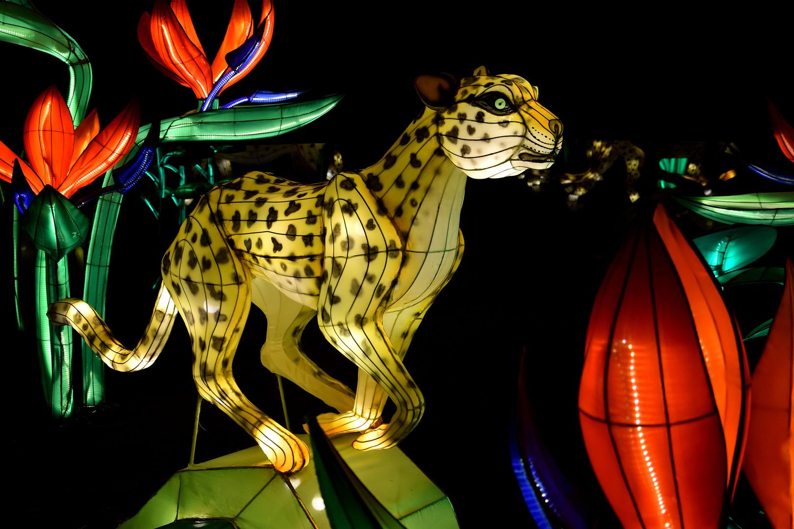 Kölner Zoo - China Light Festival 27