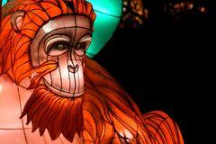 Kölner Zoo - China Light Festival 29