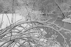 Kölscher Schnee (unglaublich, aber wahr ;-) s/w