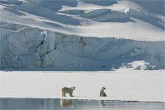 Königreich Arktis...