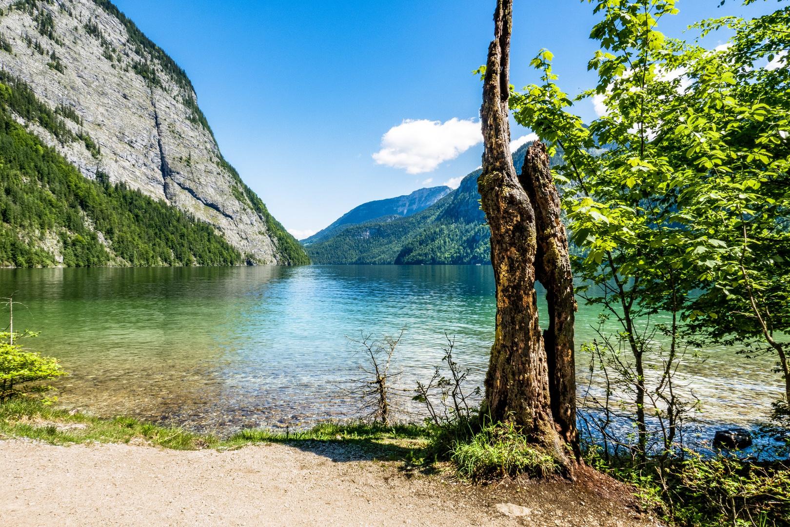 Königssee Foto & Bild | natur, see, landschaft Bilder auf ...