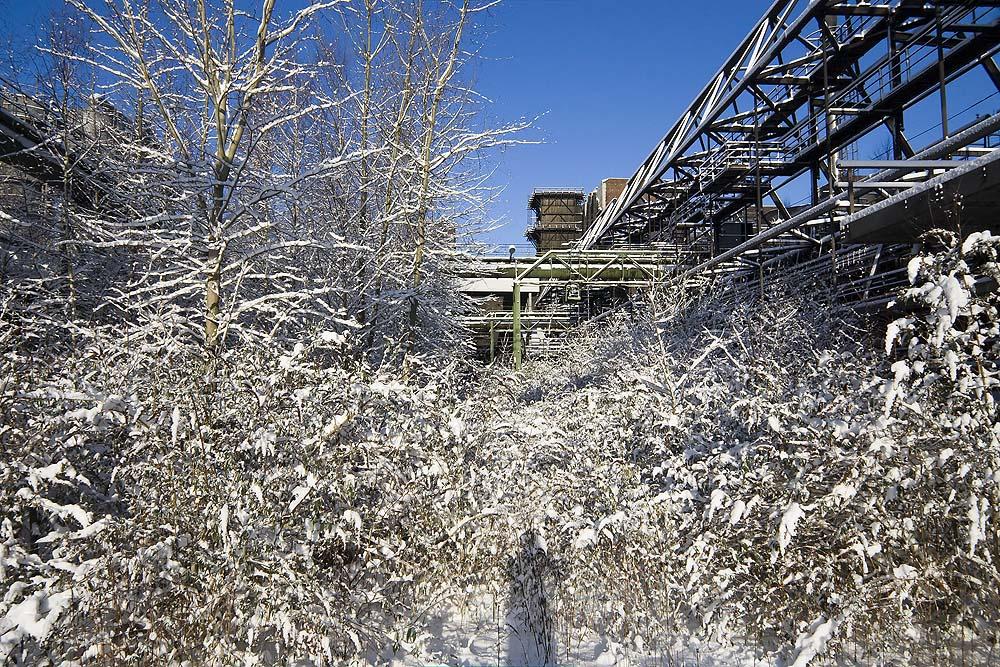 Kokerei Hansa im Schnee