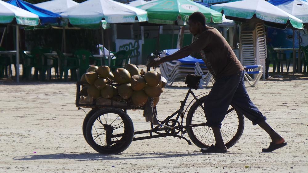 Kokosnuss Transport