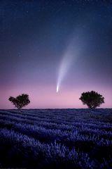 * Komet *