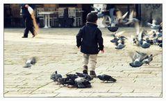 Komm, gehn wir Tauben...
