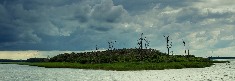 Komoraninsel (Masuren)