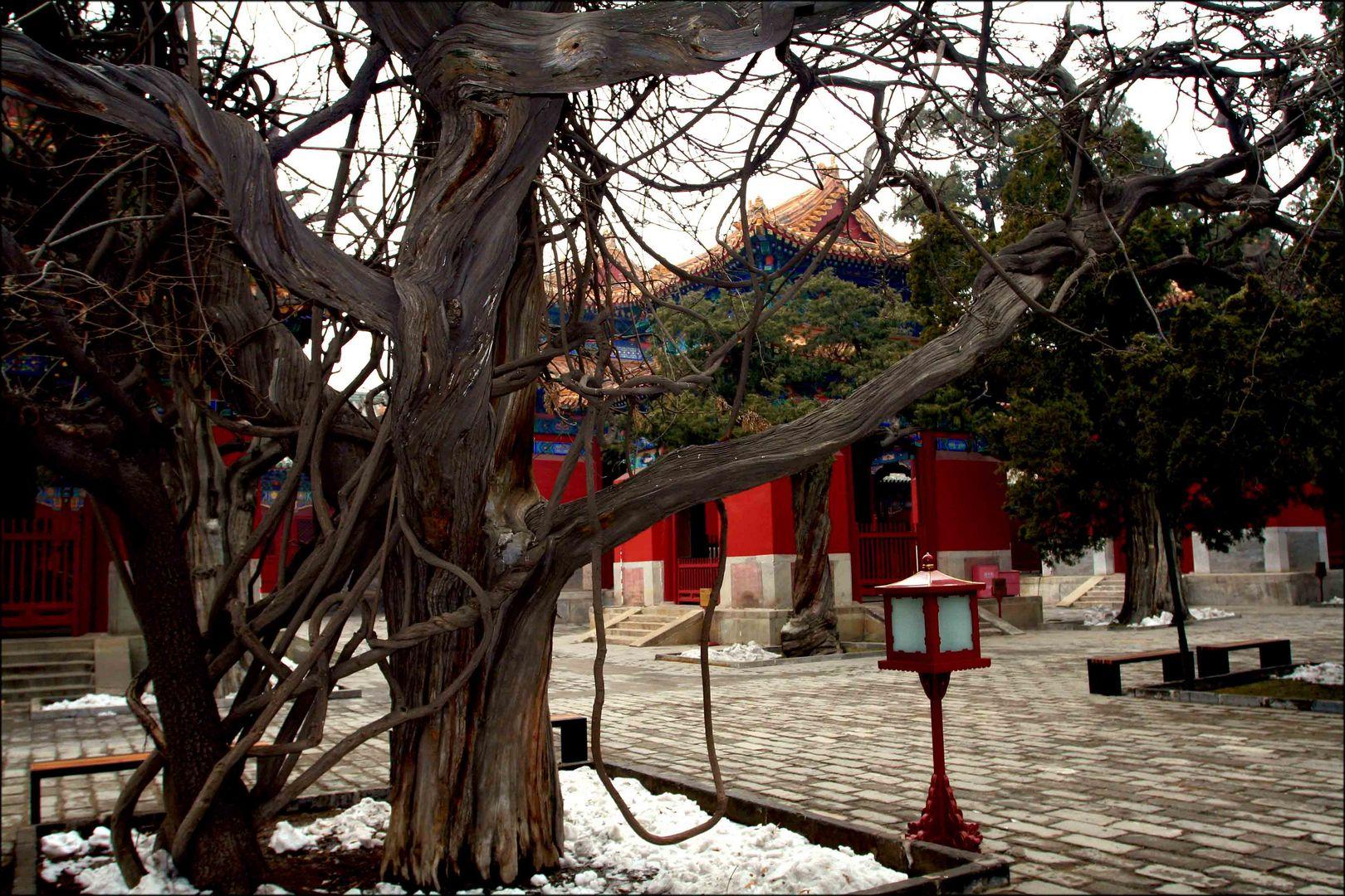 Konfuziustempel