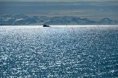 Kongsfjord, Spitzbergen