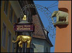 Konstanz - Elefanten