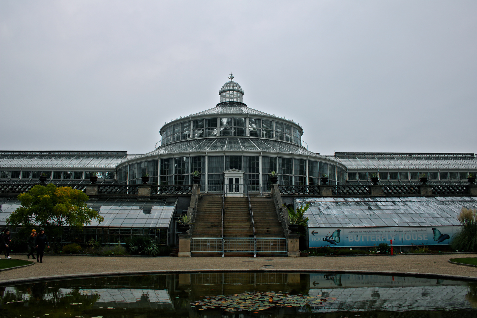 Kopenhagen, Botansicher Garten, Palmenhaus