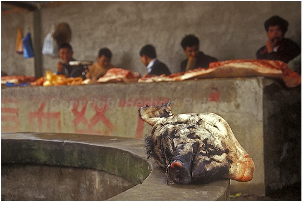 Kopf ab, das Schwein