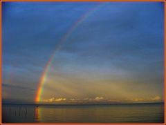 Kormoran tröcknet seine Flügel unter der Wärme des Regenbogens