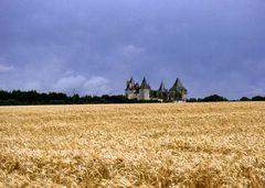 Kornfeld und Chateau an der Dordogne