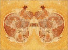 Korpulentes (bayrisch: molliges) Paar beim Boogie-Woogie - Tanzen mit abschließendem Küßchen.