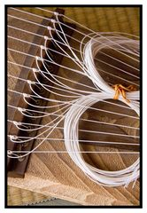 KOTO[Japanese Harp]