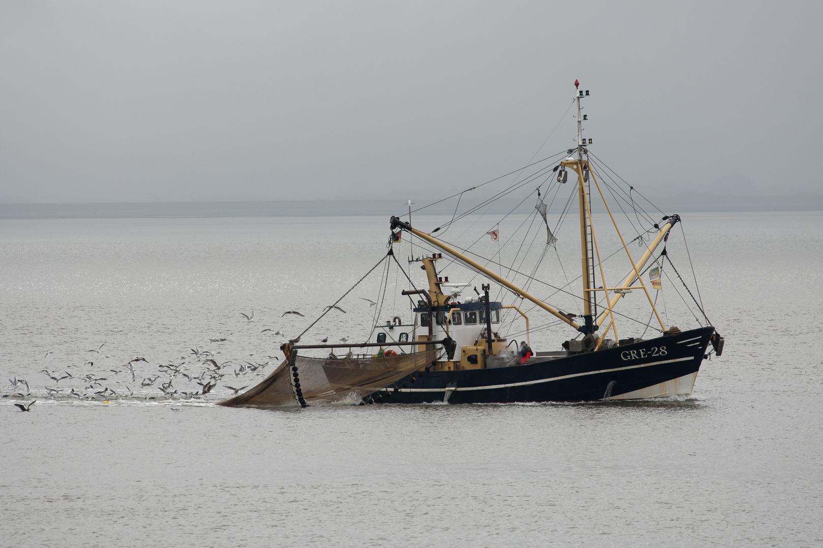 Krabbenfischer vor Norderney