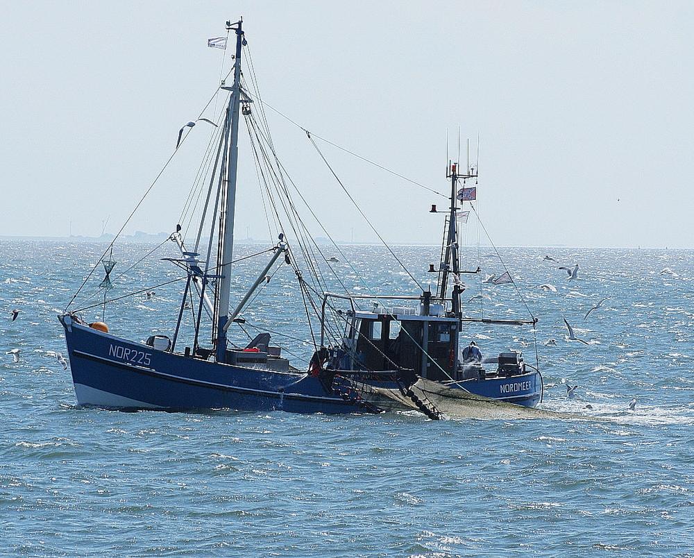 Krabbenkutter bei Norderney