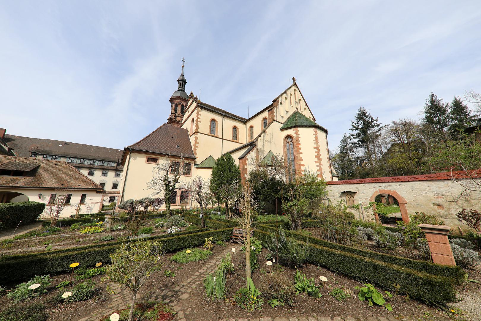 Kräutergarten, Gengenbach mit Stadtkirche Sankt Marien
